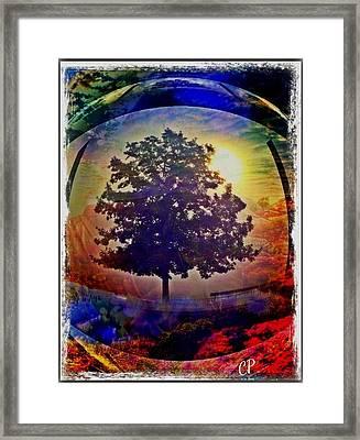 Yakshis Framed Print
