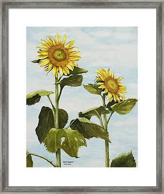 Yana's Sunflowers Framed Print by Mary Ann King