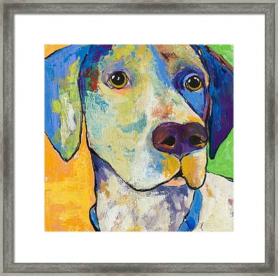 Yancy Framed Print by Pat Saunders-White