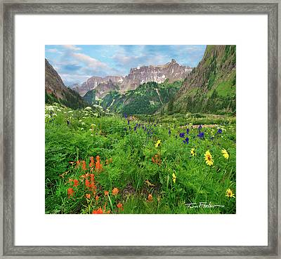 Yankee Boy Basin Framed Print