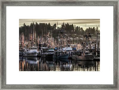 Yaquina Bay Boat Basin At Dawn Framed Print by Thom Zehrfeld