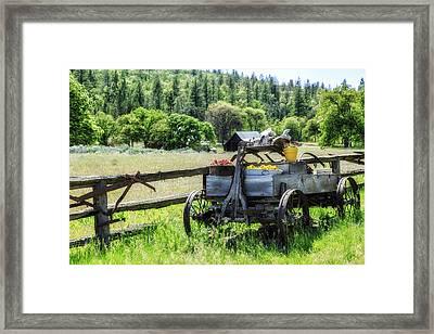 Yard Art Framed Print by Dennis Adams