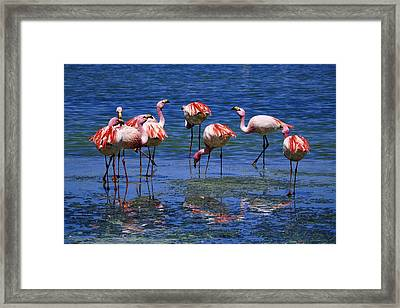 Yard Ornaments Framed Print by Skip Hunt