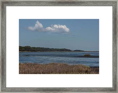 Framed Print featuring the photograph Yawkey Wildlife Reguge - View From The Causeway by Suzanne Gaff
