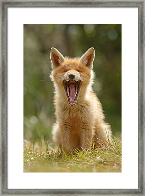 Yawning Fox Kit Framed Print by Roeselien Raimond