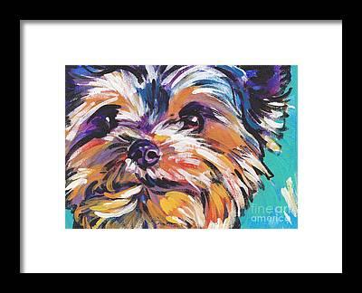 Terriers Framed Prints