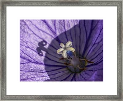 Yea, Like That Too.... Framed Print