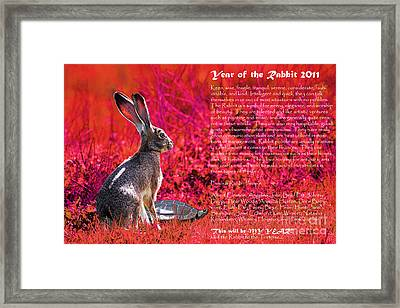 Year Of The Rabbit 2011 . Red Framed Print by Wingsdomain Art and Photography