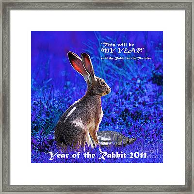 Year Of The Rabbit 2011 . Square Blue Framed Print by Wingsdomain Art and Photography