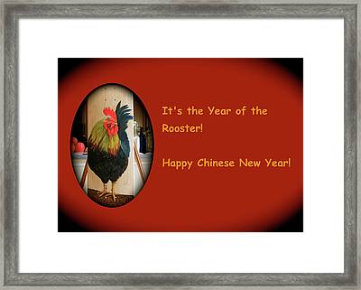 Year Of The Rooster Framed Print by Cyril Maza