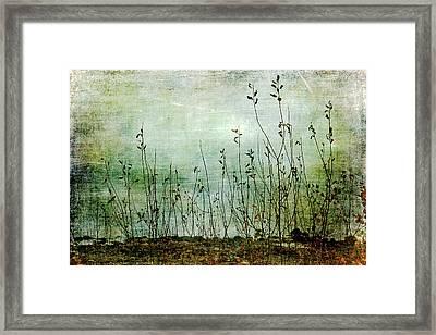 Yearning Away Framed Print