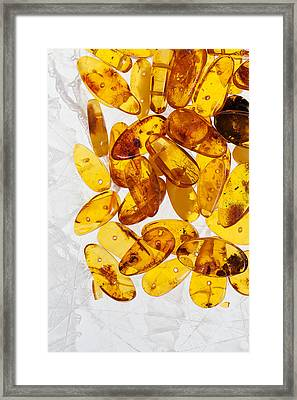 Framed Print featuring the photograph Yellow Amber Stones  by Andrey  Godyaykin