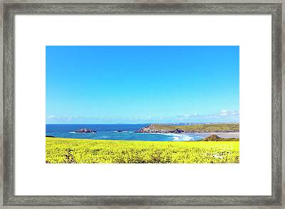 Yellow And Blue Framed Print by Terri Waters