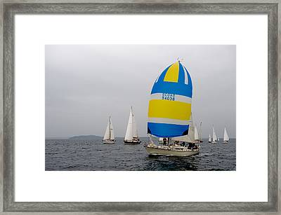 yellow and Blue Framed Print by Tom Dowd