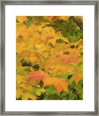 Framed Print featuring the photograph Yellow And Green Fall Leaves by Michael Flood