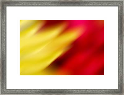 Yellow And Red Framed Print