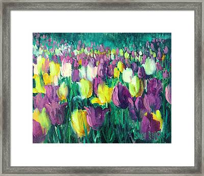Yellow And Violet Tulips Framed Print by Sally Seago