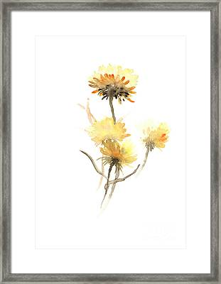 Yellow Aster Flowers Watercolor Poster Framed Print by Joanna Szmerdt