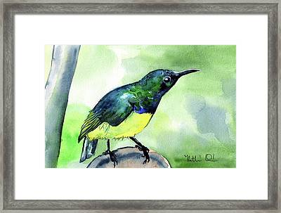 Framed Print featuring the painting Yellow Bellied Sunbird by Dora Hathazi Mendes