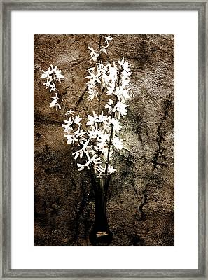 Framed Print featuring the photograph Yellow Bells by Gray  Artus