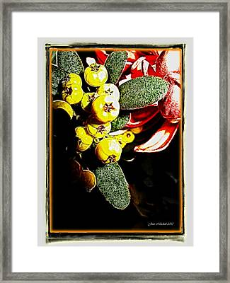 Framed Print featuring the photograph Yellow Berries by Joan  Minchak
