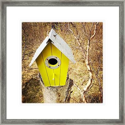 Yellow Bird House Framed Print