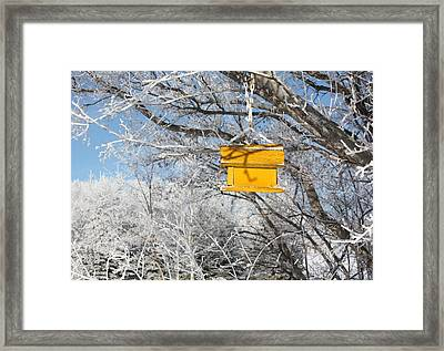 Yellow Bird House Framed Print by Pat Purdy