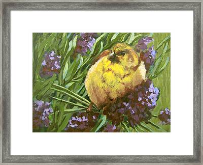 Framed Print featuring the painting Yellow Bird by Karen Ilari