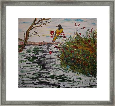 Yellow Bird Framed Print by Sima Amid Wewetzer