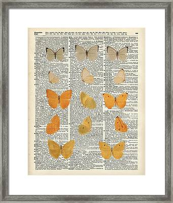 Yellow Butterflies Over Dictionary Book Page Framed Print
