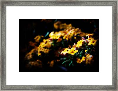 Yellow Framed Print by Cabral Stock