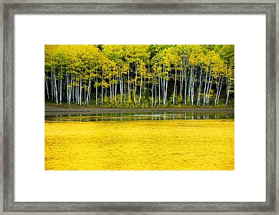 Yellow Framed Print by Chad Dutson
