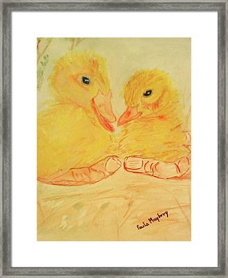 Yellow Chicks Framed Print