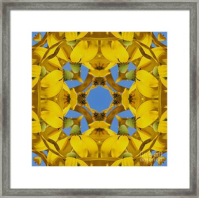 Framed Print featuring the photograph Yellow Coneflower Kaleidoscope by Smilin Eyes  Treasures