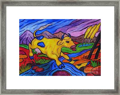 Yellow Cow Jumps A Creek Framed Print