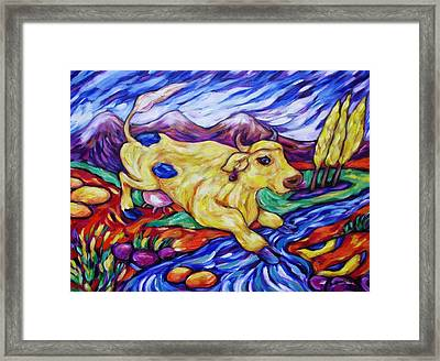 Yellow Cow Jumps The Creek Framed Print