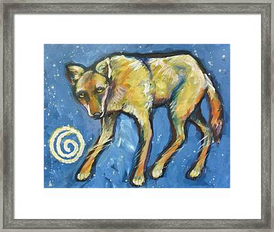 Yellow Coyote Framed Print by Carol Suzanne Niebuhr