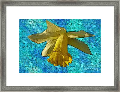 Yellow Daffodil 3 Framed Print by Jean Bernard Roussilhe