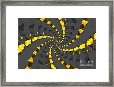 Yellow Daisy Spin Wheel  Framed Print by Debra Martz
