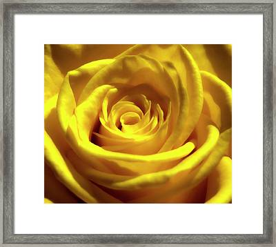 Yellow Dream 2 Framed Print