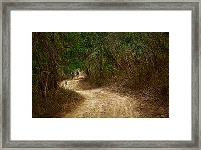 Framed Print featuring the photograph Yellow Dust Road by Cameron Wood