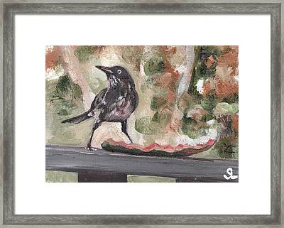 Yellow Eyed Bird Framed Print by Sarah Lynch