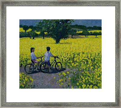Yellow Field Framed Print by Andrew Macara