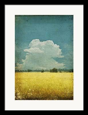 Abstract Field Framed Prints