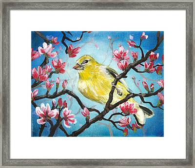 Yellow Finch Bird By Gretchen Smith Framed Print by Gretchen  Smith