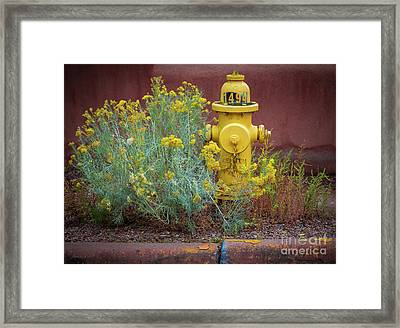 Yellow Fire Hydrant Framed Print