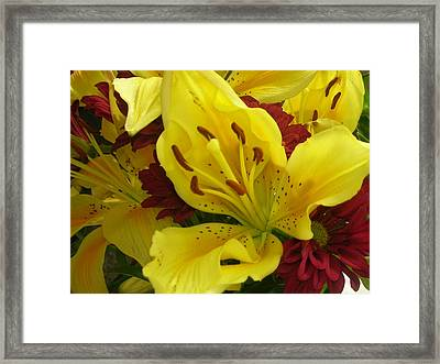 Yellow Floral Framed Print by Nancy Ferrier