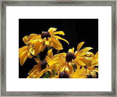 Yellow Flower 2 Framed Print