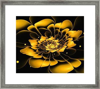 Yellow Flower Framed Print by Anastasiya Malakhova