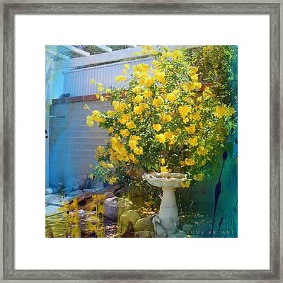 Yellow Flower Garden Framed Print